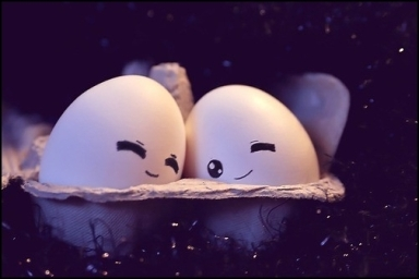 Imagenes-tiernas-de-huevos-enamorados-5